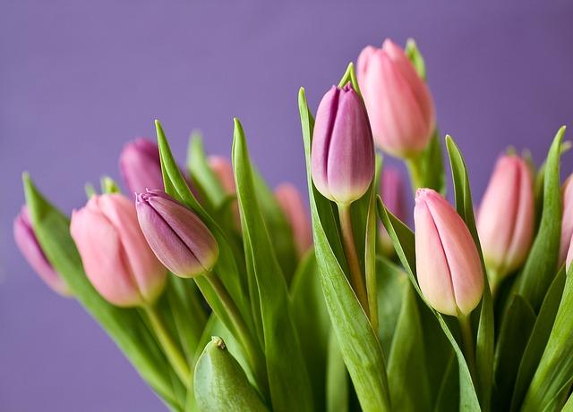 Kwiaty przez Internet w każdym kraju?