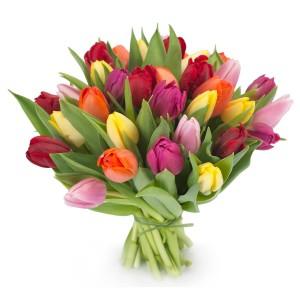 Materiały, które muszą znaleźć się w każdej kwiaciarni