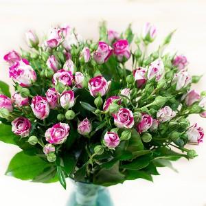 Jakich kwiatów ciętych najczęściej używa się w kwiaciarniach?