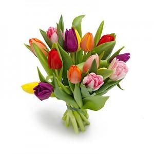 Tulipany – jedne z chętniej kupowanych kwiatów w kwiaciarniach