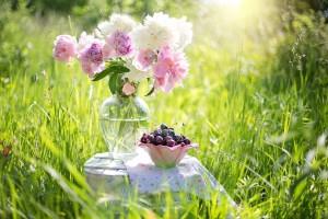 Zadbaj o kwiaty