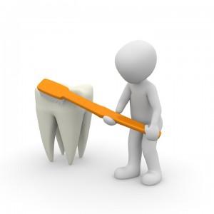 Kiedy fluoryzować zęby?