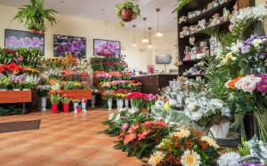 Otwieramy własną kwiaciarnię