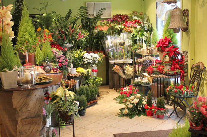 O stylach w kompozycjach roślinnych