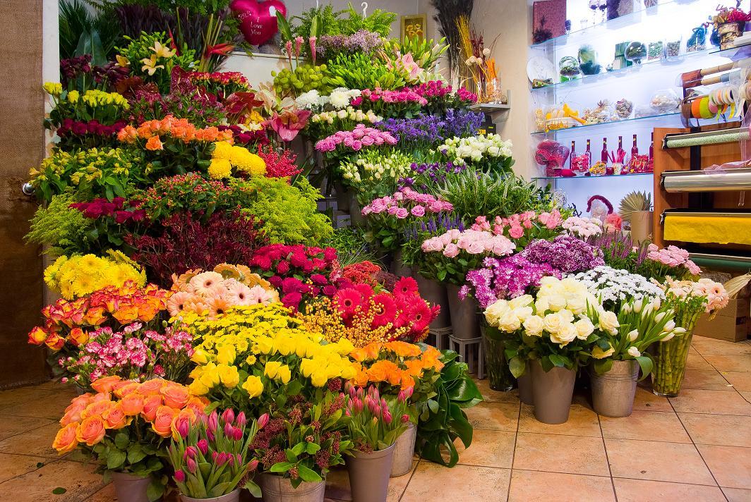 Przedłużamy trwałość ciętych kwiatów