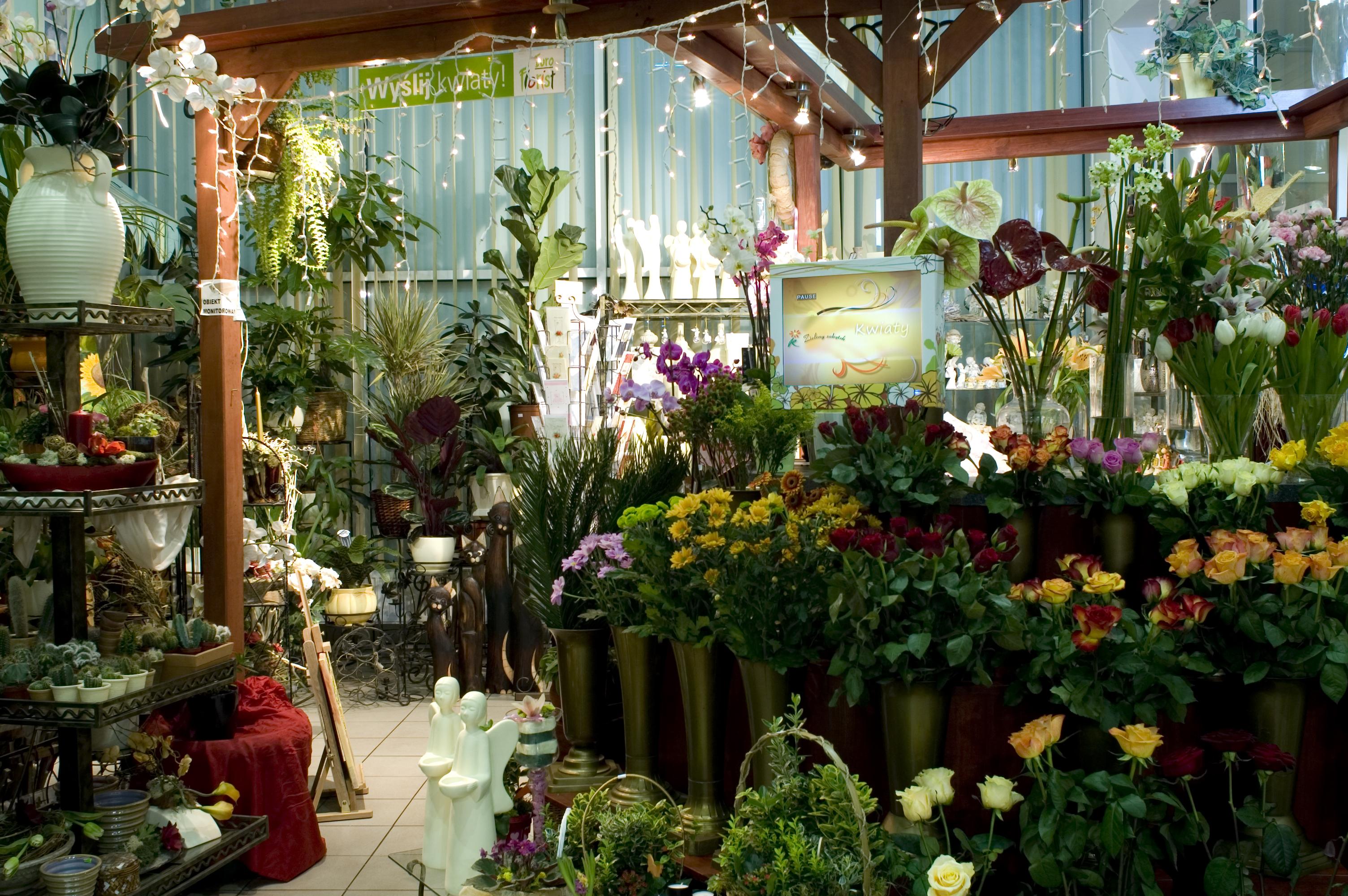 Jakie kwiaty są dostępne w kwiaciarniach tylko sezonowo?