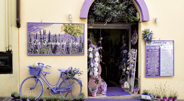 Co jest potrzebne w kwiaciarni?
