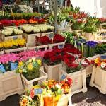 Co można sprzedawać w kwiaciarni?